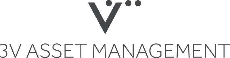 3V Logo